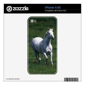 Thoroughbred Mare iPhone 4S Skin