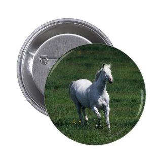 Thoroughbred Mare Pinback Button