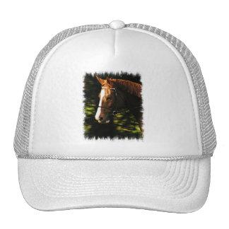 Thoroughbred Mount Baseball Hat