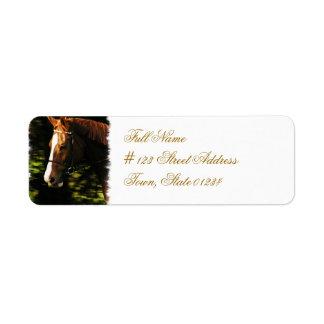 Thoroughbred Mount Mailing Label Return Address Label