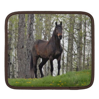 Thoroughbred Percheron Horse Equine Art Sleeve For iPads
