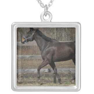 Thoroughbred Prancing Sterling Necklace