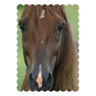 Thoroughbred Race Horse 5x7 Paper Invitation Card