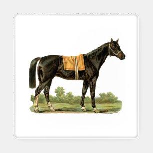 Steeplechase Racing Horses Set of 4 Coasters