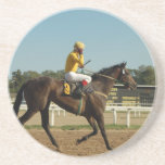 Thoroughbred Race Horse Coaster