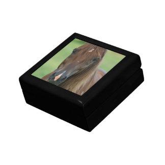 Thoroughbred Race Horse Gift Box