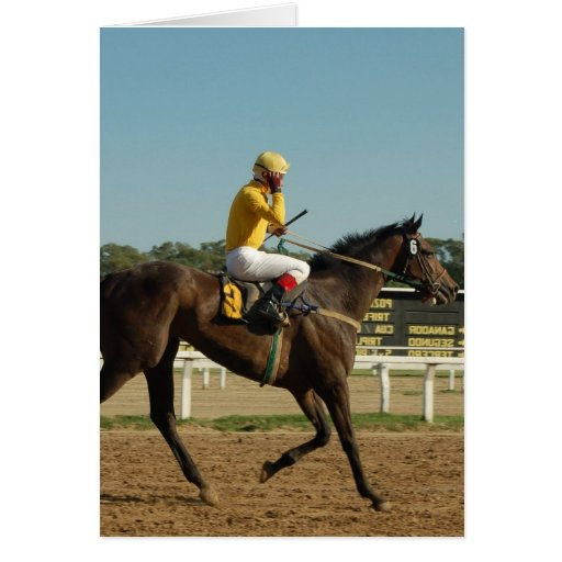 Thoroughbred Race Horse Greeting Card