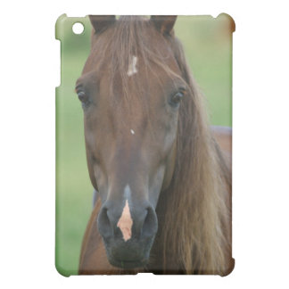 Thoroughbred Race Horse iPad Case
