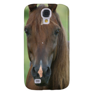 Thoroughbred Race Horse iPhone 3G Case Galaxy S4 Cover