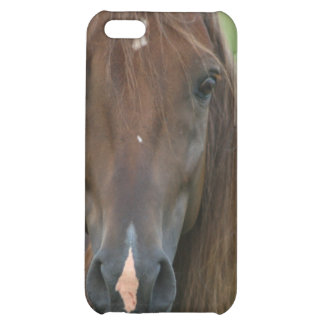 Thoroughbred Race Horse iPhone Case iPhone 5C Case