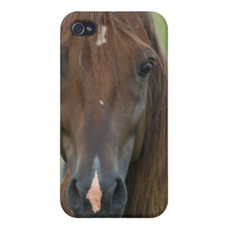 Thoroughbred Race Horse iPhone Case Case For iPhone 4