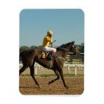 Thoroughbred Race Horse  Premium Magnet Rectangular Magnets