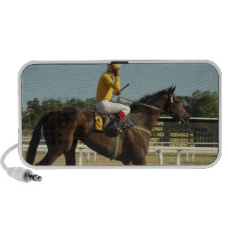Thoroughbred Race Horse Speakers