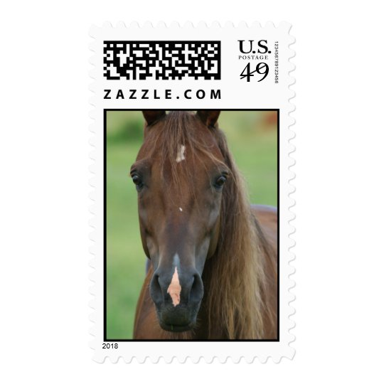 Thoroughbred Race Horse Stamp