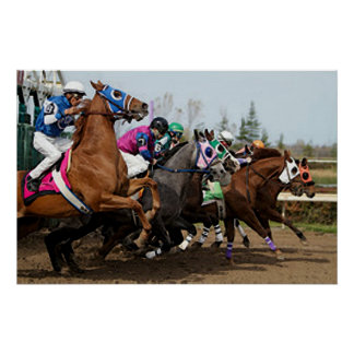 Thoroughbred Racehorse Opening The Gate Print