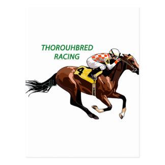 Thoroughbred Racing Postcard