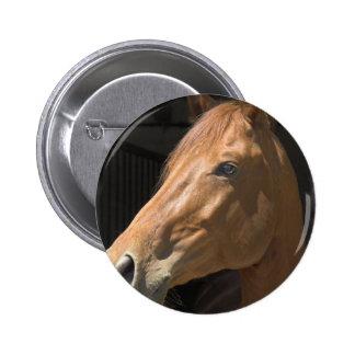 Thoroughbred Round Pin