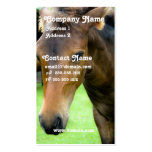 Thoroughbred Selection Busines Card Business Card Templates