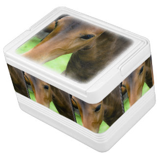 Thoroughbred Selections Igloo Can Cooler