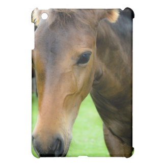 Thoroughbred Selections iPad Case