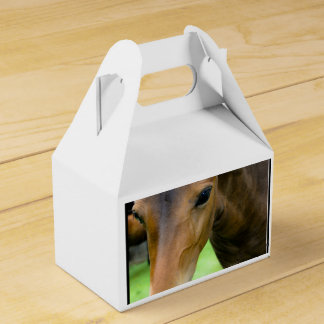 Thoroughbred Selections Party Favor Box