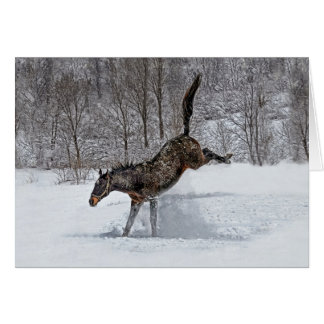 Thoroughbred Snow Joy Card