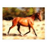 Thoroughbred Spirit Horse Art Post Card
