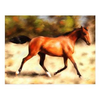 Thoroughbred Spirit Horse Art Postcard