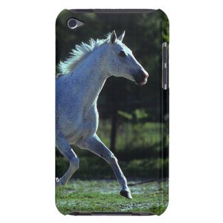 Thoroughbred Stallion Running iPod Touch Cover