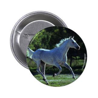 Thoroughbred Stallion Running Pinback Button