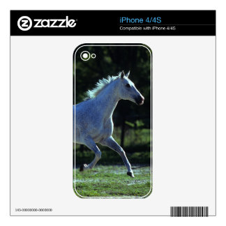 Thoroughbred Stallion Running Decals For The iPhone 4S
