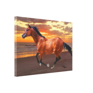 Thoroughbred sunrise Gloss Stretched Canvas Print