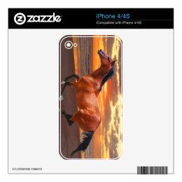 Thoroughbred Sunrise iPhone Zazzle Skin Skin For The iPhone 4S