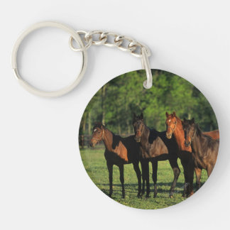 Thoroughbred Yearlings Keychain