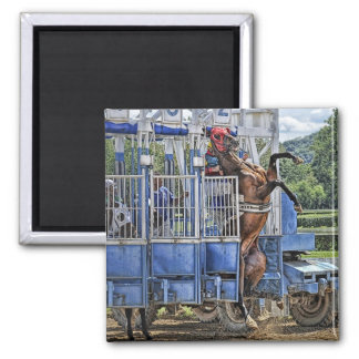 "Thoroughbreds ""Risky Business""  Square Magnet"