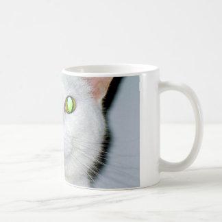 Those eyes! mug