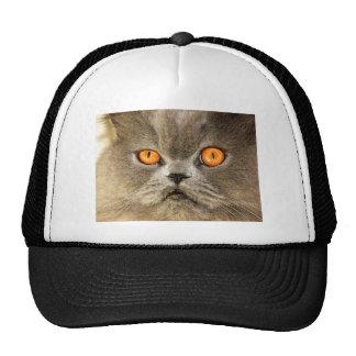 Those Eyes! Trucker Hat