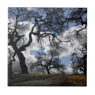 Those Spooky Trees Ceramic Tile