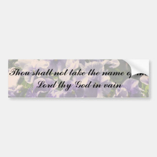 Thou Shall Not Take Name of God in Vain Bumper Sticker