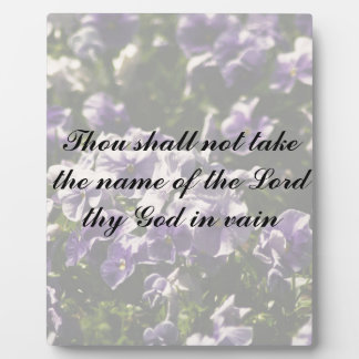 Thou Shall Not Take Name of God in Vain Plaque