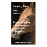 Thoughbred Horse Business Card
