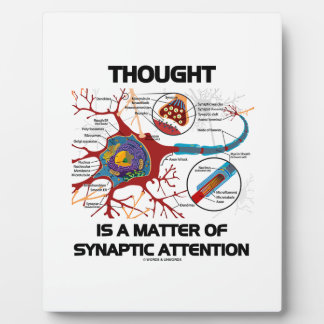 Thought Is A Matter Of Synaptic Attention (Neuron) Plaque