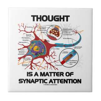 Thought Is A Matter Of Synaptic Attention (Neuron) Tile