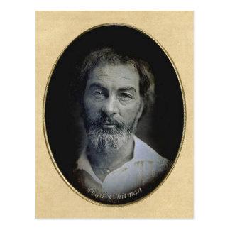 Thoughtful eyes of Poet Walt Whitman Postcard