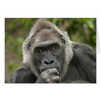 Thoughtful Gorilla Greeting Card