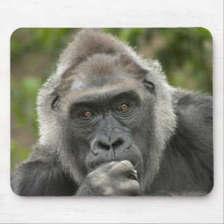 Thoughtful Gorilla Mousepad