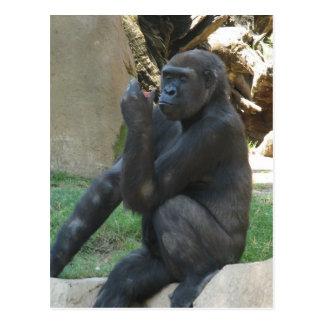 Thoughtful Gorilla Postcard