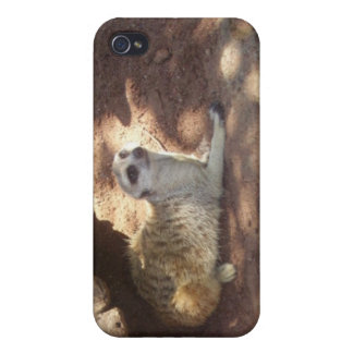 Thoughtful Meerkat Cover For iPhone 4