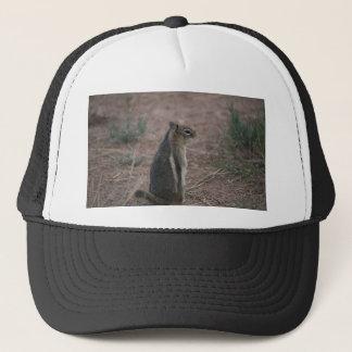 Thoughtful Squirrel Trucker Hat