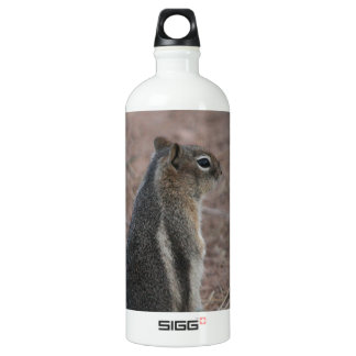 Thoughtful Squirrel Water Bottle